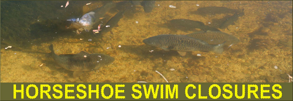 SWIM CLOSURES ON HORSESHOE
