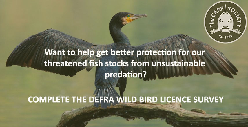 Call to action - Defra Bird Licence Survey