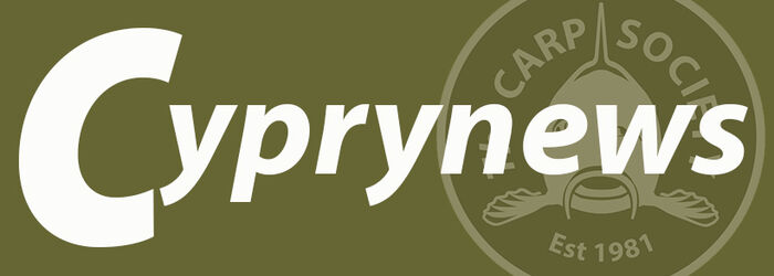 Cypry-New Year-News Jan 2021