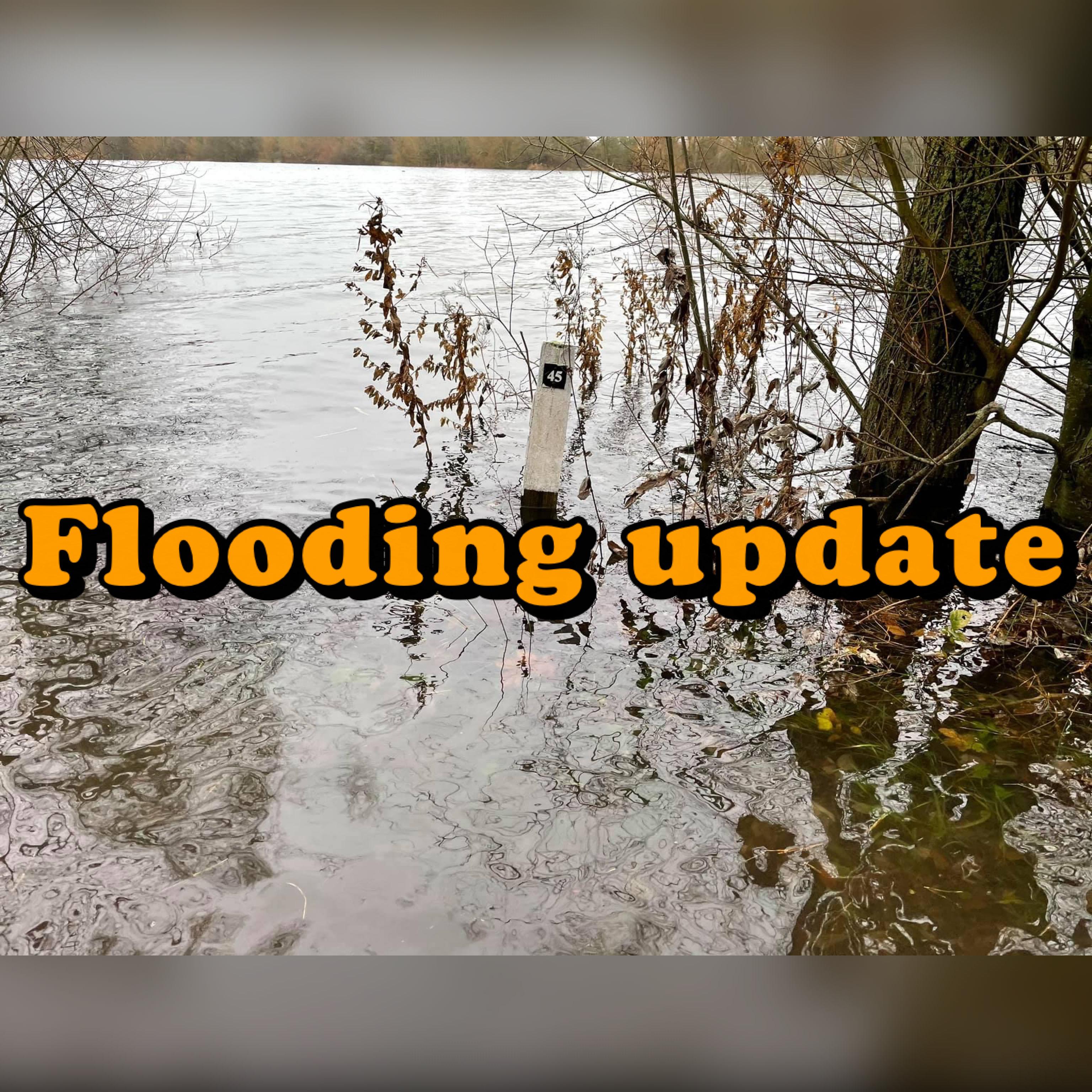 FLOODING UPDATE - HORSESHOE LAKE